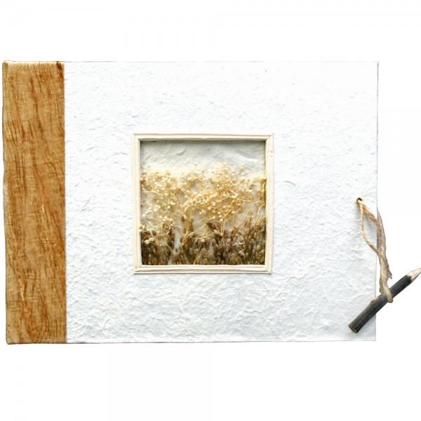 """Album photos """"Nature"""""""