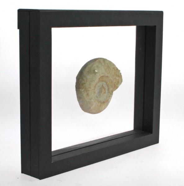 Cadre de présentation 3D - 4510