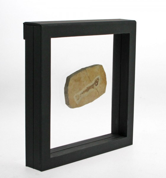 Cadre de présentation 3D - 4506